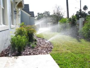 home sprinkler irrigation project