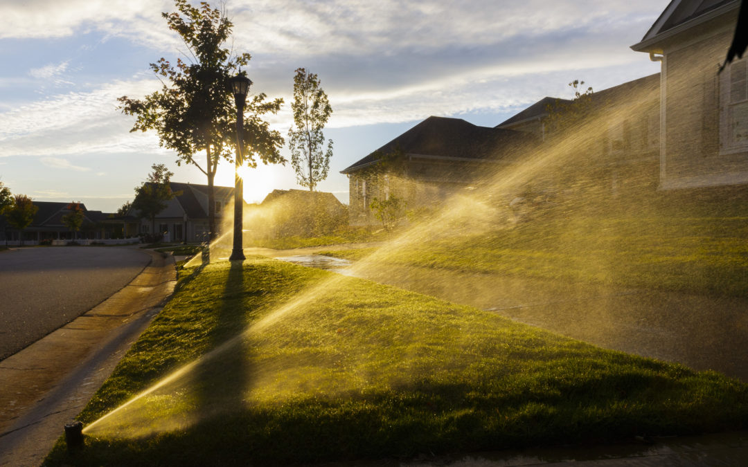 Reasons To Have Your Sprinkler Repaired