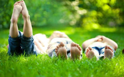 What Makes Grass Healthy and Strong?